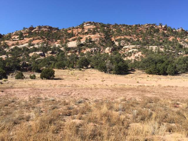 Lot 4 Box S Ranch Road, Ramah, NM 87321 (MLS #957203) :: Keller Williams Realty