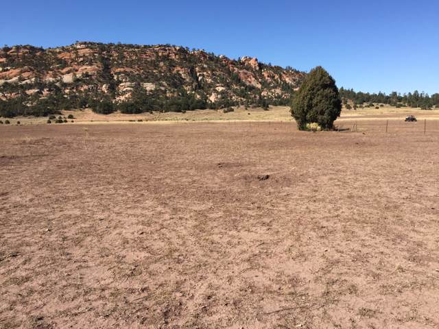 Lot 11 Box S Ranch Road, Ramah, NM 87321 (MLS #957205) :: Keller Williams Realty