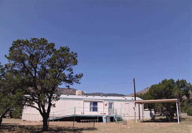 98 Tanglewood Circle, Datil, NM 87821 (MLS #957337) :: Campbell & Campbell Real Estate Services