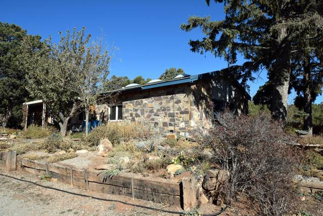 12461 State Highway, Cedar Crest, NM 87008 (MLS #957343) :: Campbell & Campbell Real Estate Services