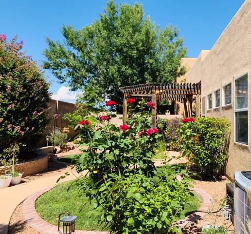 6635 Salt Cedar Trail NW, Albuquerque, NM 87120 (MLS #957448) :: Silesha & Company