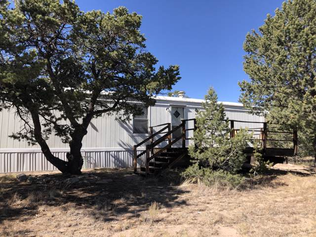 133 Homestead Trail, Datil, NM 87821 (MLS #957473) :: Campbell & Campbell Real Estate Services