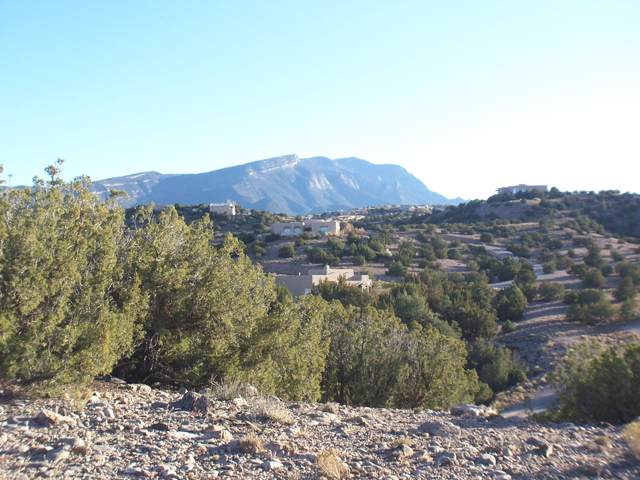 Sacred Path, Placitas, NM 87043 (MLS #957542) :: Campbell & Campbell Real Estate Services