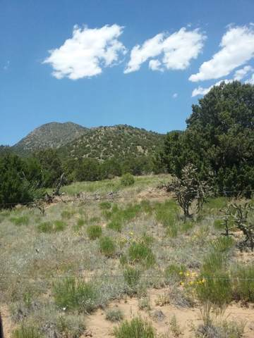 00000000 Snowy Owl Road, Stanley, NM 87056 (MLS #957552) :: Campbell & Campbell Real Estate Services