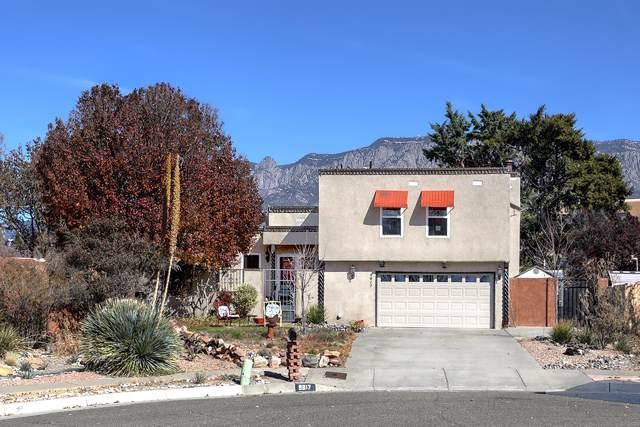 9817 Admiral Nimitz Avenue NE, Albuquerque, NM 87111 (MLS #957809) :: The Bigelow Team / Red Fox Realty