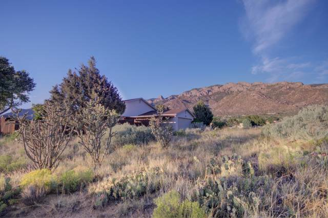 653 Cougar Loop NE, Albuquerque, NM 87122 (MLS #957825) :: Campbell & Campbell Real Estate Services