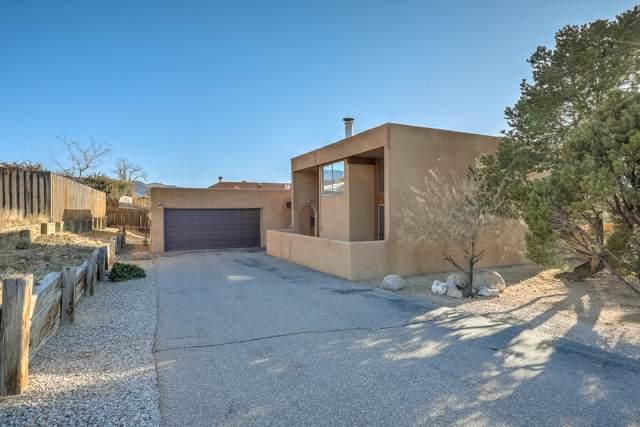 726 Tramway Vista Court NE, Albuquerque, NM 87122 (MLS #957865) :: Campbell & Campbell Real Estate Services