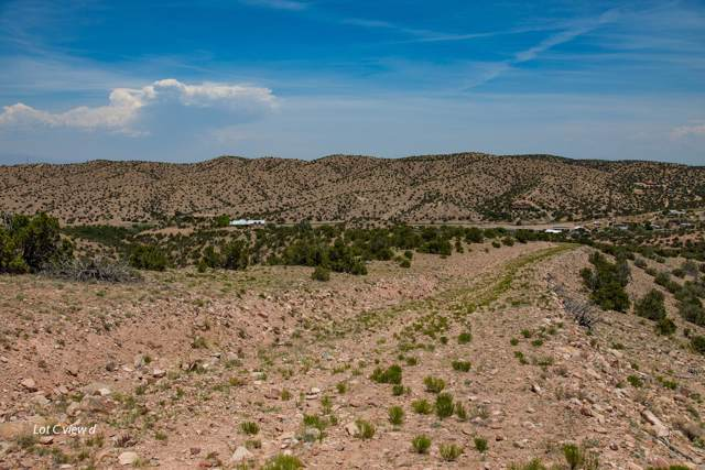 Algodon Lane, Placitas, NM 87043 (MLS #957893) :: Campbell & Campbell Real Estate Services