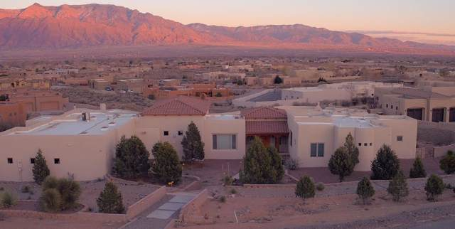 517 Albino Road, Corrales, NM 87048 (MLS #957946) :: Campbell & Campbell Real Estate Services
