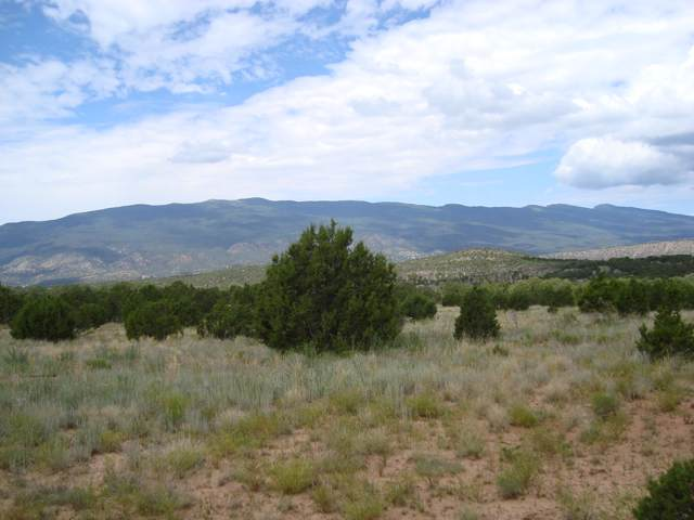 480 & 490 Forest Road 462, Tijeras, NM 87059 (MLS #957963) :: Silesha & Company