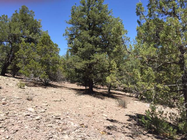 Lot 13 Fox - Timberlake Road, Ramah, NM 87321 (MLS #958005) :: The Buchman Group