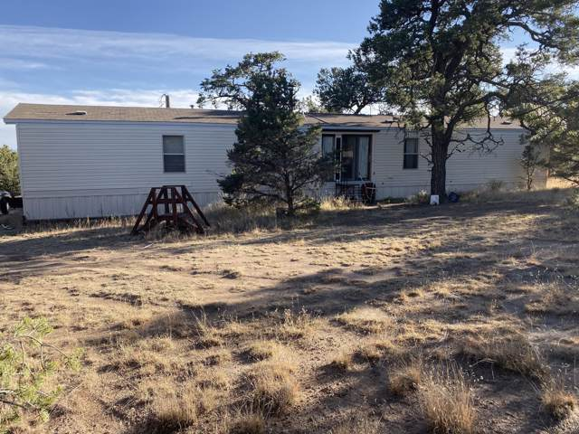 60 Pinon Drive, Datil, NM 87821 (MLS #958120) :: The Buchman Group