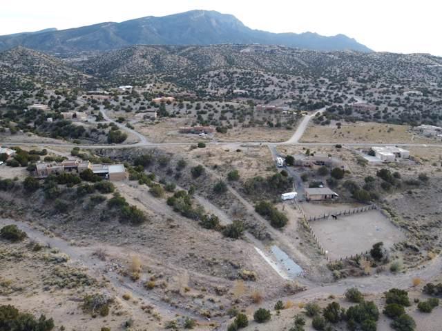 19 Cedar Creek Road, Placitas, NM 87043 (MLS #958232) :: Campbell & Campbell Real Estate Services