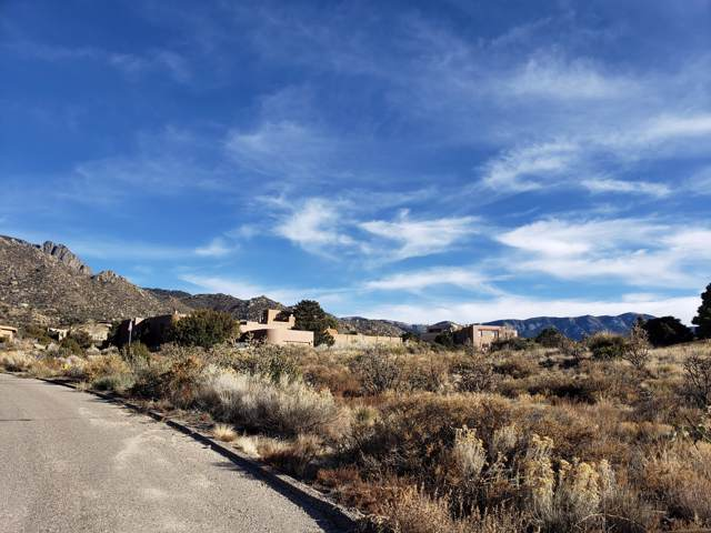 Lot 637 Cougar Loop, Albuquerque, NM 87122 (MLS #958316) :: Campbell & Campbell Real Estate Services