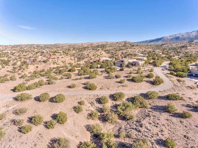 Placitas Homesteads, Placitas, NM 87043 (MLS #958367) :: Campbell & Campbell Real Estate Services