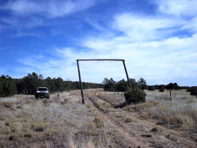 Nm-337, Estancia, NM 87016 (MLS #958398) :: The Buchman Group