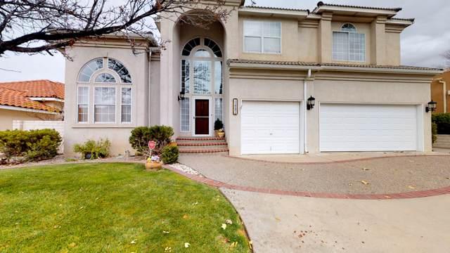 11721 Sky Valley Way NE, Albuquerque, NM 87111 (MLS #958471) :: Campbell & Campbell Real Estate Services