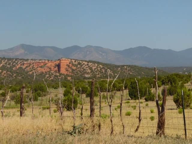 Red Bluff Road, Mountainair, NM 87036 (MLS #958544) :: Berkshire Hathaway HomeServices Santa Fe Real Estate