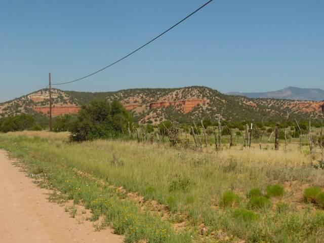Red Bluff Road, Mountainair, NM 87036 (MLS #958554) :: Berkshire Hathaway HomeServices Santa Fe Real Estate
