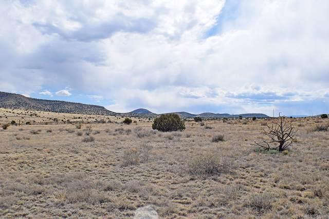 Lot 3 Golden West Loop, Magdalena, NM 87825 (MLS #958915) :: The Bigelow Team / Red Fox Realty