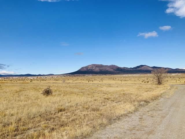 90 High Meadow Loop, Edgewood, NM 87015 (MLS #958941) :: The Buchman Group