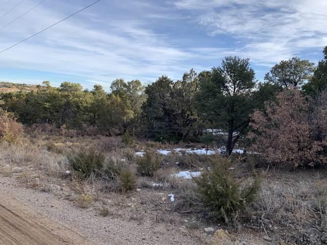 Tract 3 Bryant Road, Edgewood, NM 87015 (MLS #958950) :: Silesha & Company