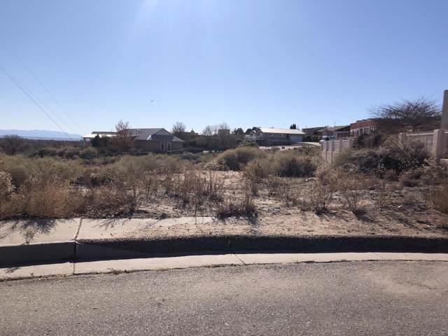 1802 Calle Del Vista NW, Albuquerque, NM 87105 (MLS #958978) :: Campbell & Campbell Real Estate Services