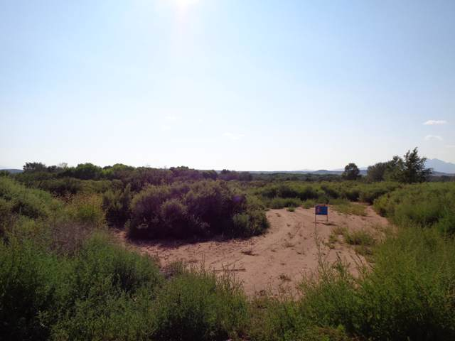 West Of Calle De Centro South, La Joya, NM 87028 (MLS #959130) :: Campbell & Campbell Real Estate Services