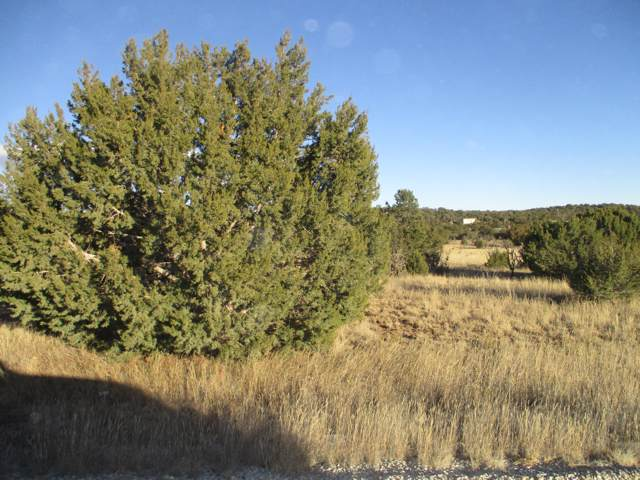 Lot 33 Blk 1 Woodland Hills, Edgewood, NM 87015 (MLS #959151) :: Campbell & Campbell Real Estate Services