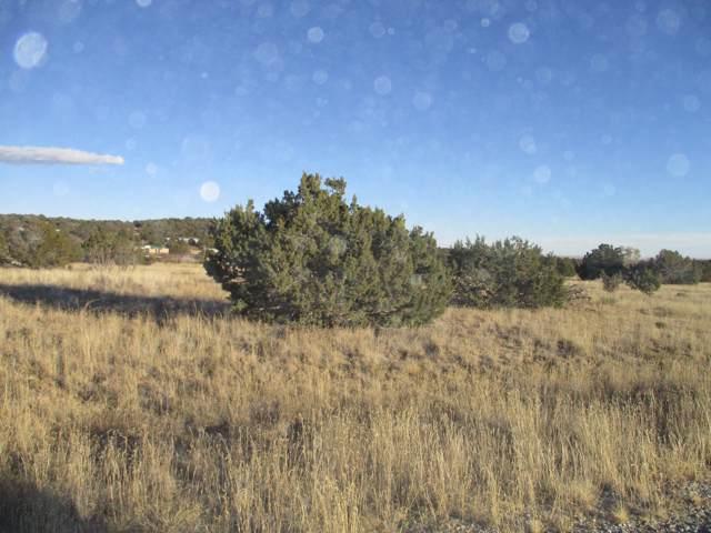 Lot 9 Block 1 Woodland Hills, Edgewood, NM 87015 (MLS #959162) :: The Buchman Group