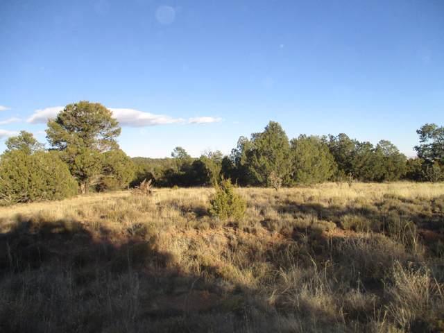 Lot 10 Blk 1 Woodland Hills, Edgewood, NM 87015 (MLS #959163) :: The Buchman Group