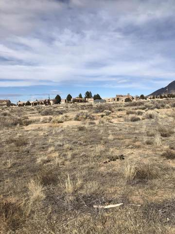 Alameda Boulevard NE, Albuquerque, NM 87122 (MLS #959230) :: The Buchman Group