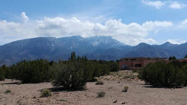Alexi Place, Placitas, NM 87043 (MLS #959239) :: Campbell & Campbell Real Estate Services