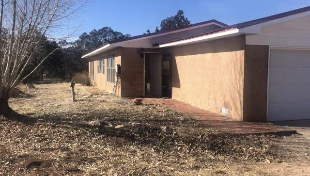 1307 Mountain Valley Road, Sandia Park, NM 87047 (MLS #959369) :: Campbell & Campbell Real Estate Services