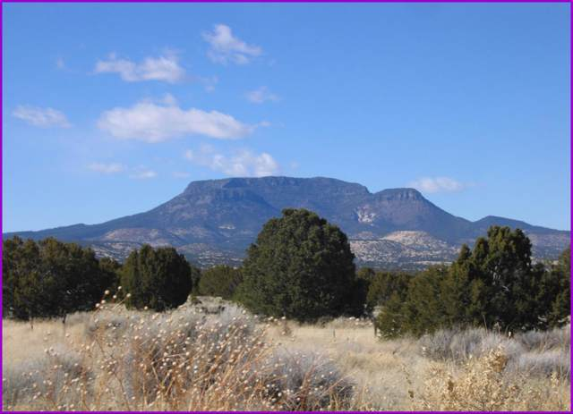 62 Tee Pee Trail, Datil, NM 87821 (MLS #959376) :: The Buchman Group