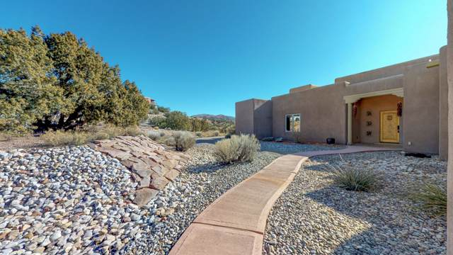 15 Mimbres Road, Placitas, NM 87043 (MLS #959422) :: Campbell & Campbell Real Estate Services