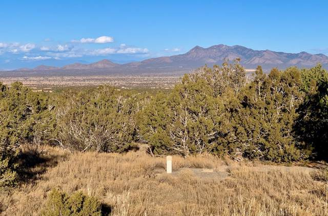 21 Osito Road, Sandia Park, NM 87047 (MLS #959452) :: Campbell & Campbell Real Estate Services