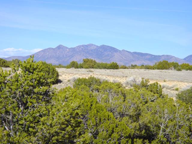 43 Anasazi Trail, Sandia Park, NM 87047 (MLS #959460) :: Campbell & Campbell Real Estate Services
