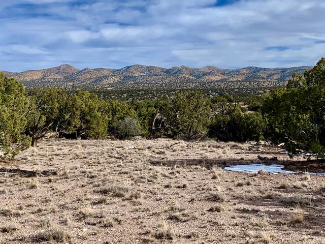 56 Camino Del Sueno, Magdalena, NM 87825 (MLS #959493) :: Sandi Pressley Team