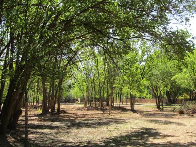 1 Happy Trails Lane, Corrales, NM 87048 (MLS #959537) :: Sandi Pressley Team