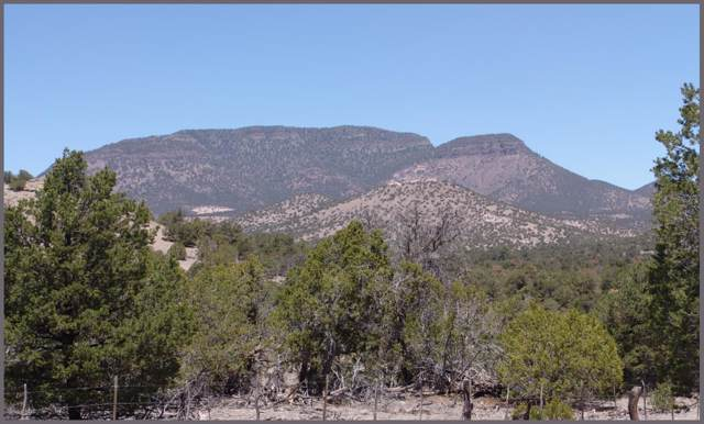 4 Rutter Ranch, Datil, NM 87821 (MLS #959688) :: The Bigelow Team / Red Fox Realty