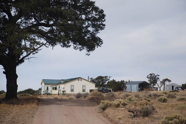 99 Rigsby Rd - Mckelvey Ranch, Pie Town, NM 87827 (MLS #959725) :: The Buchman Group