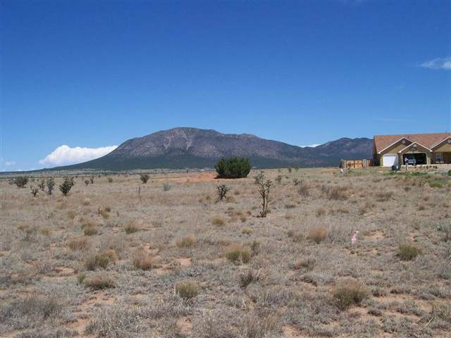 19 Northland Meadows Place, Edgewood, NM 87015 (MLS #959775) :: The Buchman Group