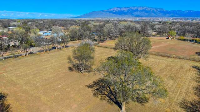 916 Chamisal Road NW, Los Ranchos, NM 87107 (MLS #959862) :: Campbell & Campbell Real Estate Services