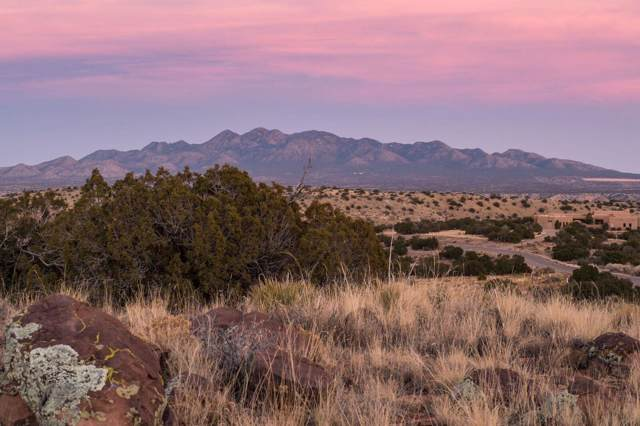 100 Wild Primrose, Placitas, NM 87043 (MLS #959927) :: Berkshire Hathaway HomeServices Santa Fe Real Estate