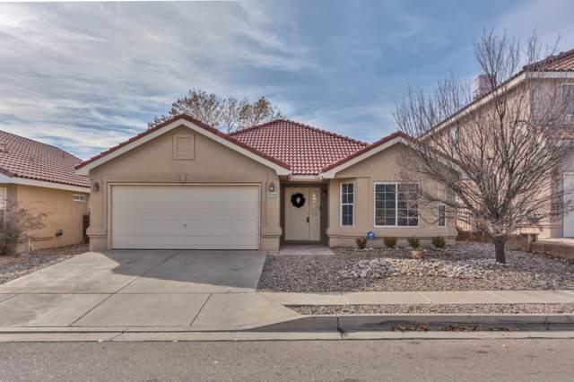 4232 Ridgerunner Road NW, Albuquerque, NM 87114 (MLS #959986) :: Sandi Pressley Team