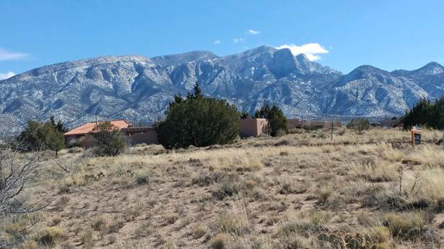 Ocate Court, Placitas, NM 87043 (MLS #959990) :: Campbell & Campbell Real Estate Services