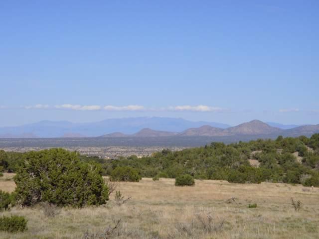 49 Via Entrada, Sandia Park, NM 87047 (MLS #960052) :: Sandi Pressley Team