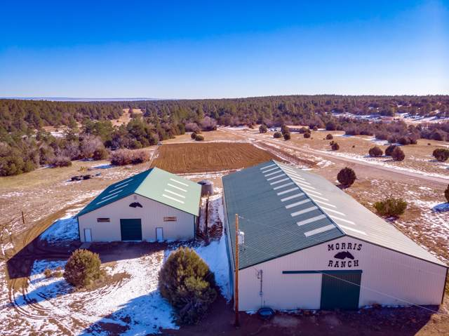 10280 Hwy 337, Tijeras, NM 87059 (MLS #960090) :: Campbell & Campbell Real Estate Services