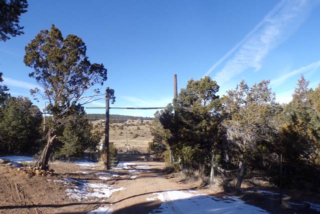9 Best View Trail, Edgewood, NM 87015 (MLS #960106) :: Campbell & Campbell Real Estate Services